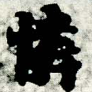 HNG005-0113