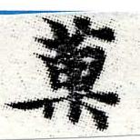 HNG006-0123