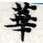 HNG006-0457