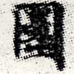 HNG012-0302