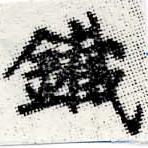 HNG012-0586