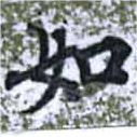 HNG014-0975