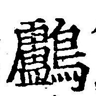 HNG042-1131