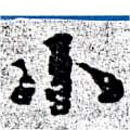 HNG058-0213