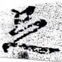 HNG058-0447