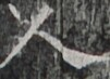 http://hng.chise.org/images/iiif/zinbun/takuhon/kaisei/H1002.tif/2624,5404,101,73/full/0/default.jpg