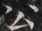 http://hng.chise.org/images/iiif/zinbun/takuhon/kaisei/H1002.tif/2989,3155,85,62/full/0/default.jpg