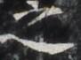 http://hng.chise.org/images/iiif/zinbun/takuhon/kaisei/H1002.tif/3476,1765,91,68/full/0/default.jpg