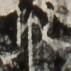 http://hng.chise.org/images/iiif/zinbun/takuhon/kaisei/H1002.tif/3703,664,71,71/full/0/default.jpg