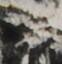 http://hng.chise.org/images/iiif/zinbun/takuhon/kaisei/H1002.tif/5244,2159,62,64/full/0/default.jpg