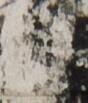 http://hng.chise.org/images/iiif/zinbun/takuhon/kaisei/H1002.tif/5360,3009,88,103/full/0/default.jpg